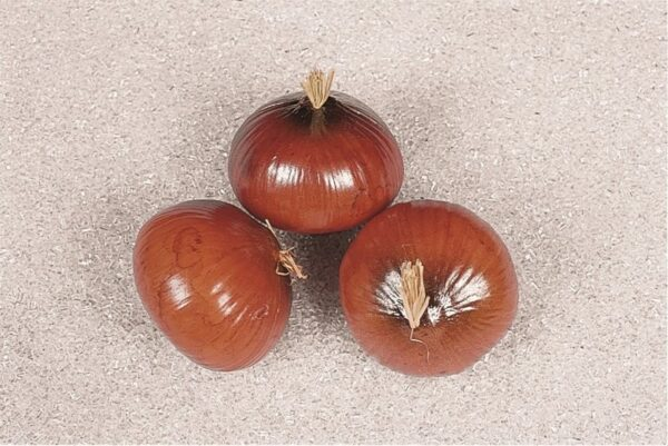 Artificial Onions