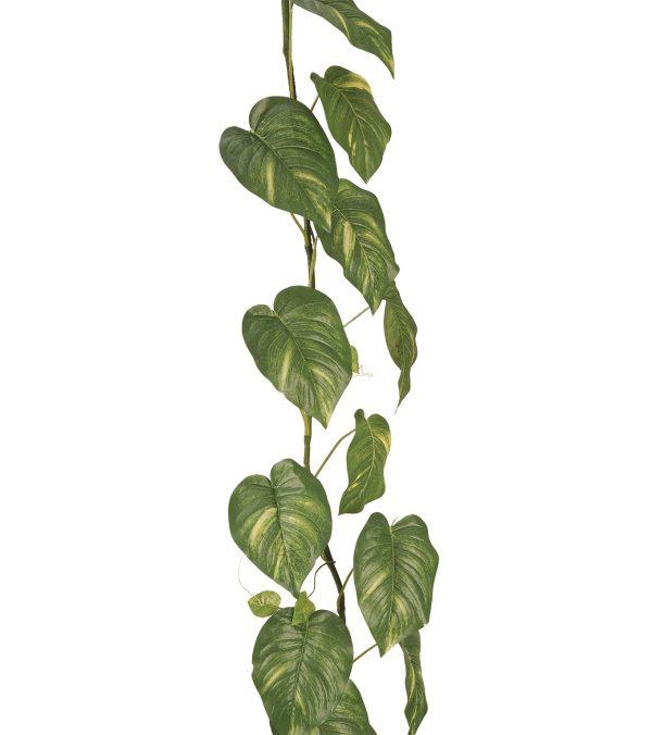 GIANT POTHOS GARLAND Green 180cm long