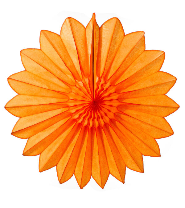 Daisy fan 68cm