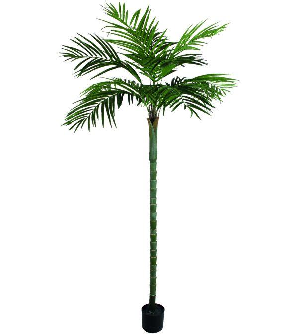 Areca Palm Tree - 270cm