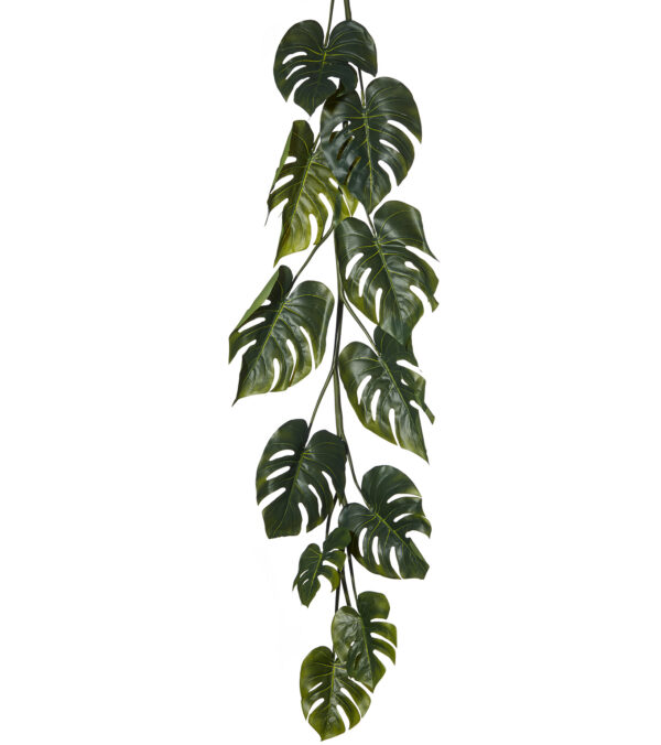 Split Philodendron Garland - 180cm long
