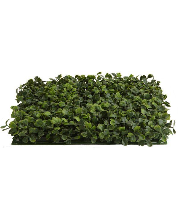 BOXWOOD PANEL Green 28CM X 28CM X 5CM