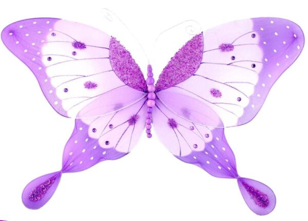 Coloured Butterfly