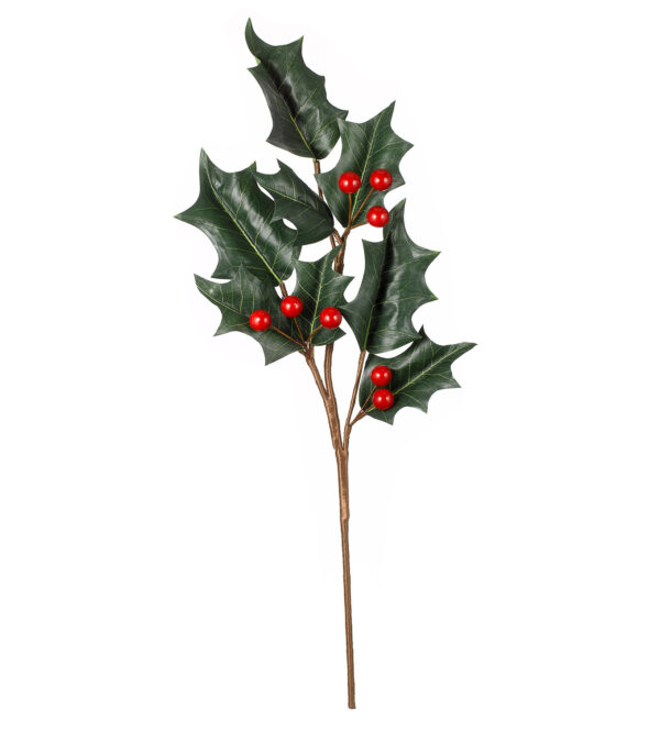 giant holly branch
