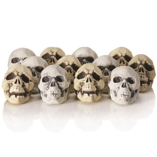 shrunken skulls