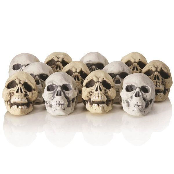 12 pack of mini skulls