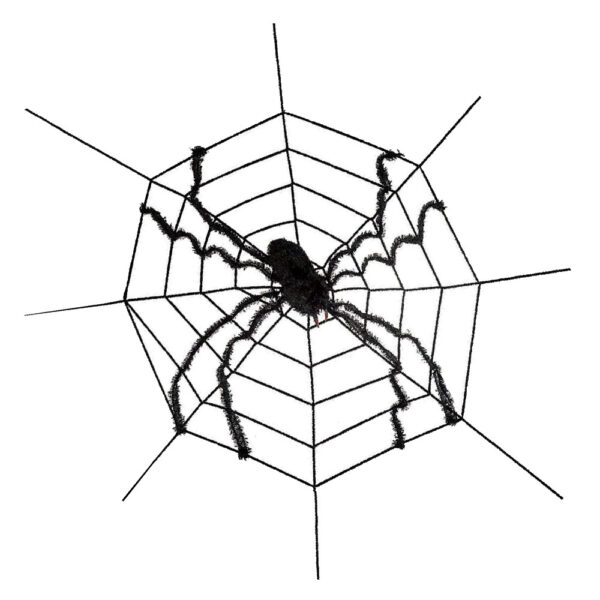 giant spider on web