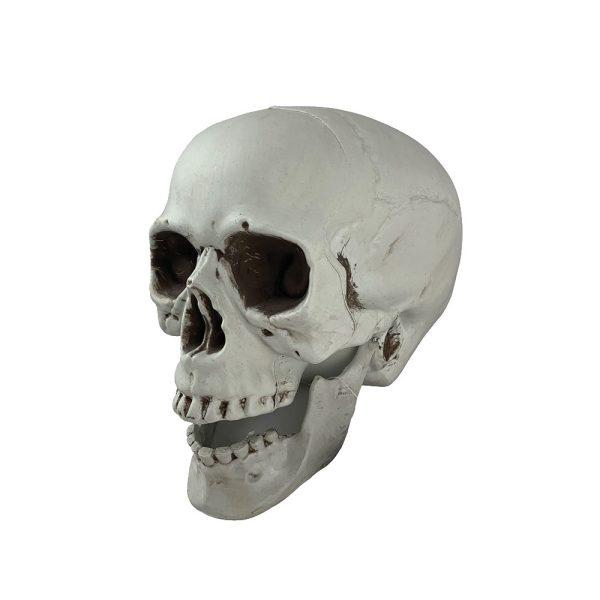 white skull decoration 18cm