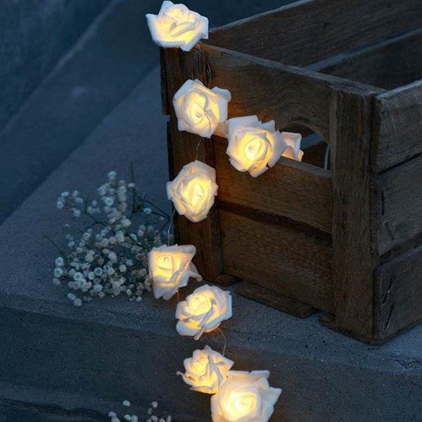large rose lights