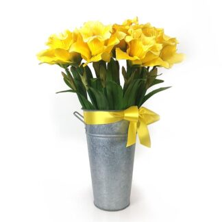 Daffodil Grande Yellow and Green 105cm - Yellow - Sold Individually