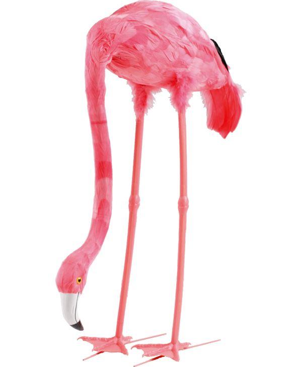Flamingo - Feeding - 70cm X 40cm - Pink - Sold Individually