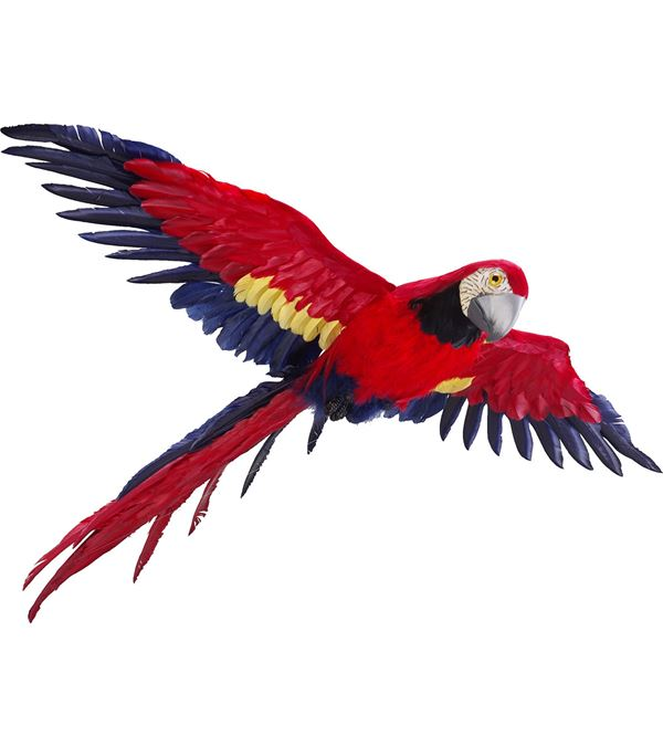 Flying Macaw - 93cm X 80cm - Red - Sold Individually