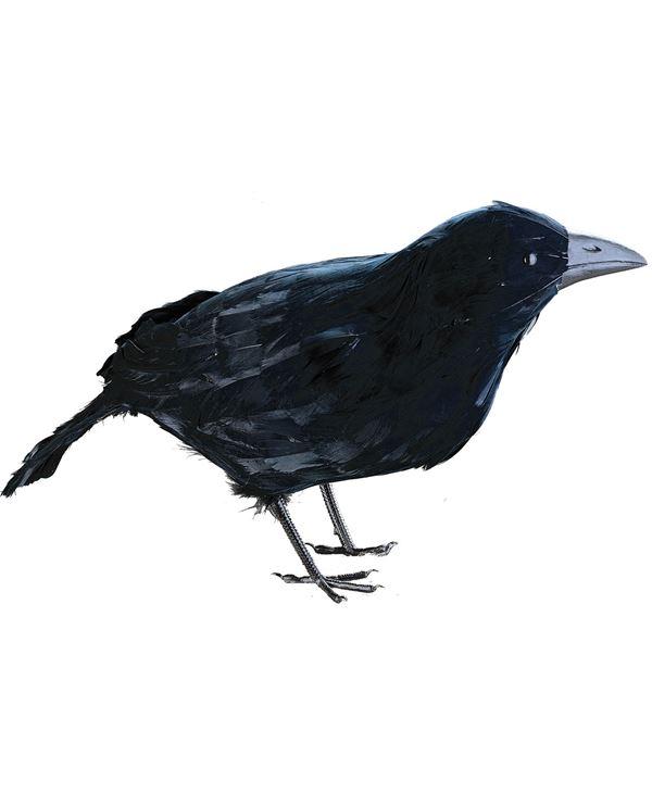 Crow - 32cm Tall X 36cm Long - Black - Sold Individually