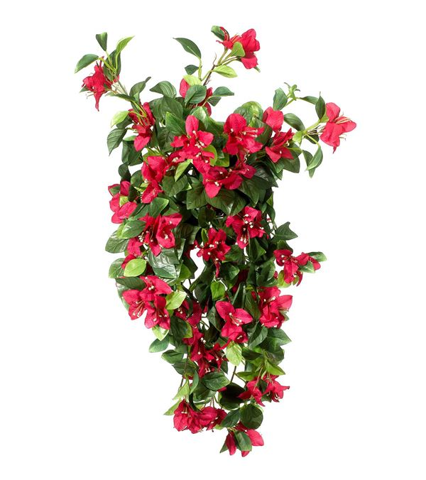 Bougainvillea - 50cm Long - Pink - Sold Individually