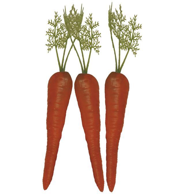 Carrots - 19cm Long - Pack of 3