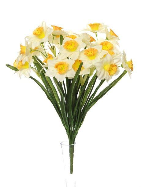 Daffodil Bush Narcissus - 48cm - Pack of 1