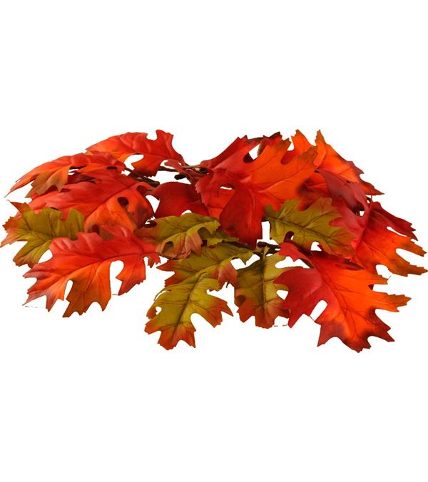 Oak Leaves - Multicolour - Packs of 72 Leaves