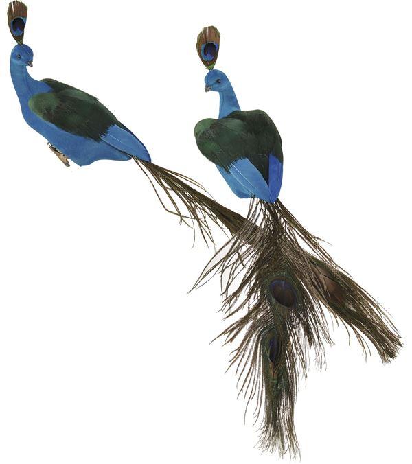 Peacock Decoration - 40cm - Blue