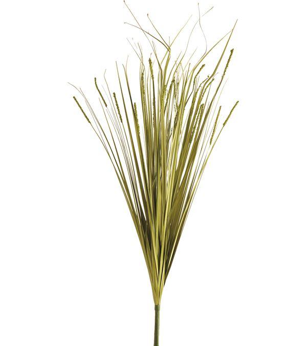 Onion Grass Spray - 81cm Tall - Green - Pack of 2