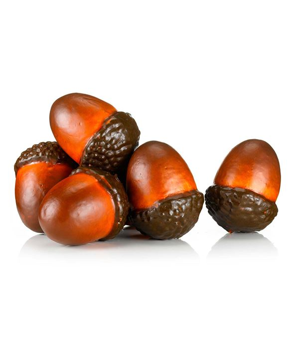 Giant Acorns - 10cm Long X 7cm Wide - Natural - Pack of 20