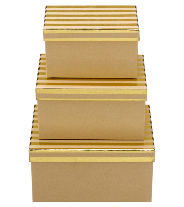 Rectangular Kraft Boxes with Stripes