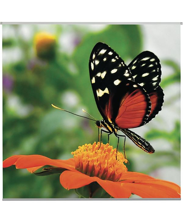 Butterfly Textile Poster - 95cm Square - Orange - Sold Individually