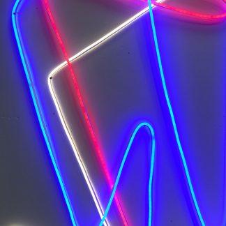 Neon Flex Lighting 5m x 20mm