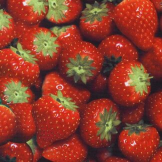 Strawberry Photoprint Fabric - 150cm Wide - Red - Per Linear Metre