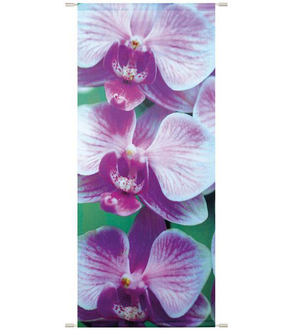 Sophia Banner - 180cm Long X 75cm Wide - Purple - Sold Individually