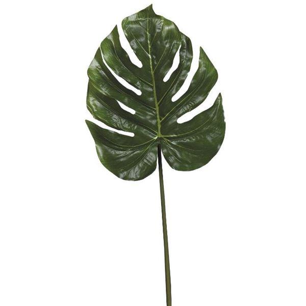 Split-Philo Leaf - 85cm - Individual