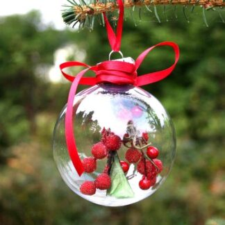 clear bauble with red berries inside