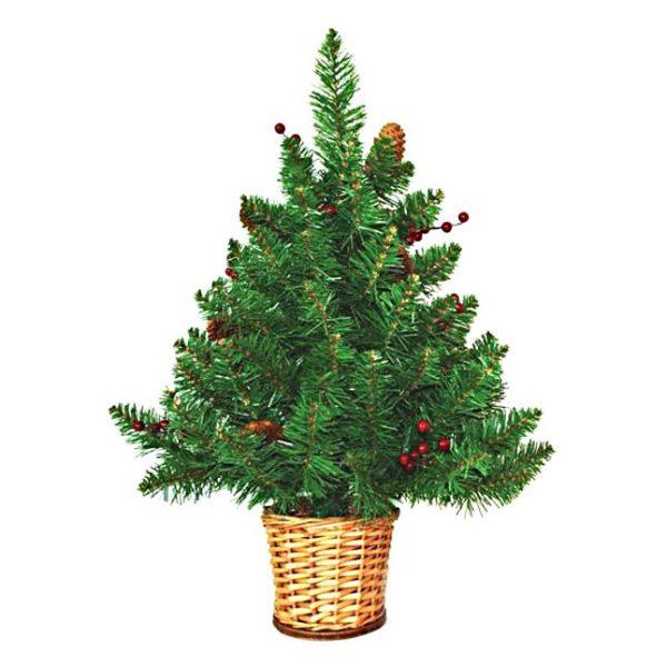 Mini Tree in Wicker Basket