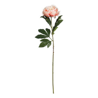 PEONY 70cm - 70cm tall - Pink - Pack of 3